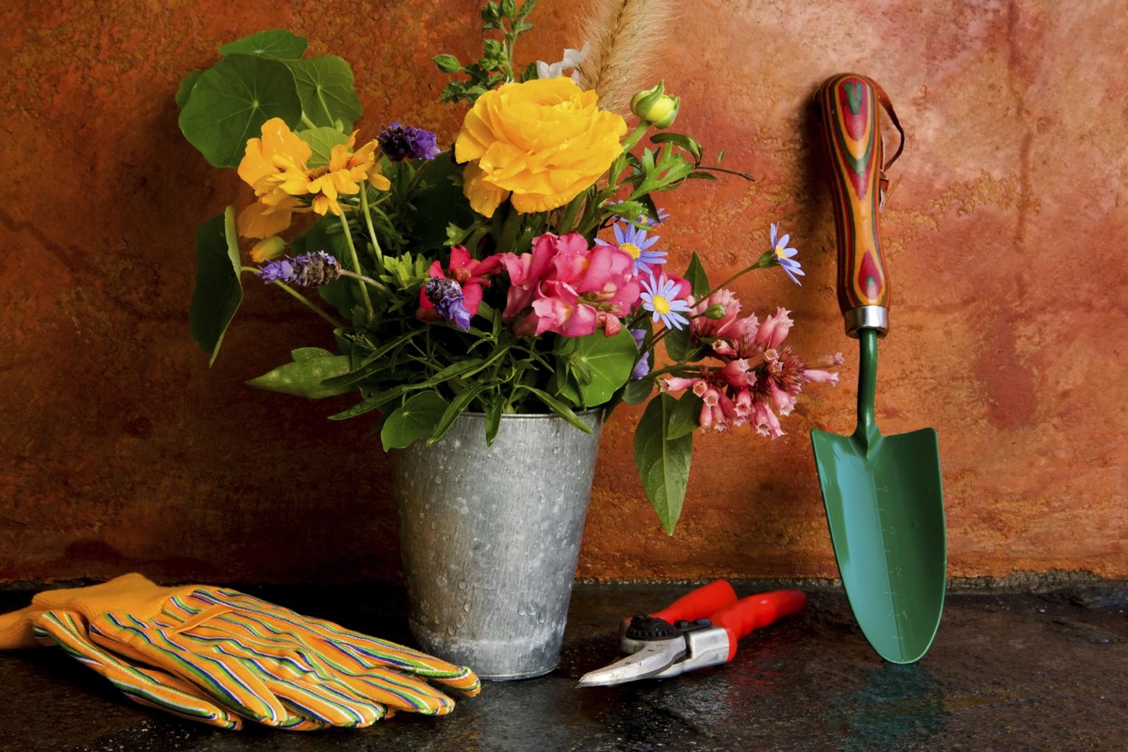 empresa jardineria madrid norte